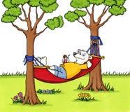 Oso que se relaja en una hamaca Imagen de archivo libre de regalías