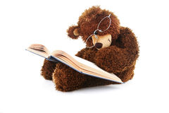 Oso relleno que lee un libro aislado en blanco Imagen de archivo