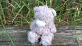 Oso triste gris abandonado de los juguetes que se sienta en la cerca del lado del país del viejo estilo con el manzano verde en f metrajes