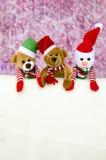 Oso y muñeco de nieve de la Navidad Foto de archivo