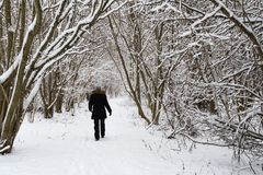 Osoba chodzi w śnieżnym krajobrazie zdjęcie royalty free