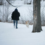 Osoba i pies cieszymy się spacer w śniegu Zdjęcia Stock