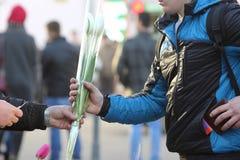 Osoba kupuje kwiatów tulipany Obrazy Royalty Free