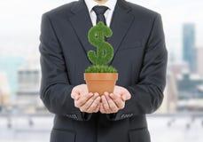 Osoba w formalnym kostiumu trzyma flowerpot z trawy zieleni dolarowym znakiem obraz stock