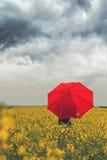 Osoba z Czerwoną Parasolową pozycją w Oilseed Rapseed Agricultura Fotografia Stock