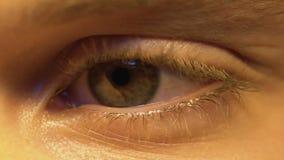Osoby czytelnicza książka, rusza się oko, dobry wzrok, okulistyka, ekstremum w górę zbiory wideo