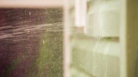 Osoby domycia domu ściana Z strumieniem woda I zdjęcie wideo