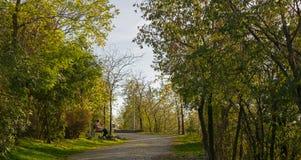 Osoby obsiadanie na ławce w parku fotografia royalty free