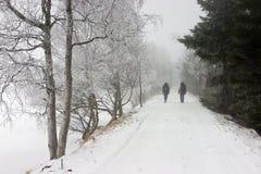 Osoby TARGET142_1_ na Śnieżnej Drodze Zdjęcie Stock
