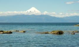 Osorno en las rocas imagen de archivo