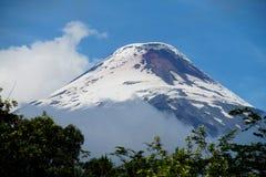 Osorno volcano stock photos