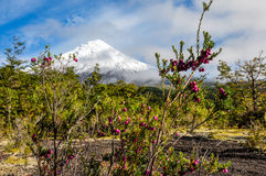 Osorno Volcano viewed from Lago Todos Los Santos, Chile Royalty Free Stock Images