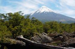 Osorno-Vulkan Stockbilder