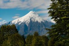 Osorno vulkan Royaltyfri Bild