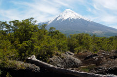Osornovulkaan Stock Afbeeldingen
