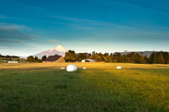 Osornovulkaan Stock Afbeelding