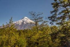 Osornovulkaan Stock Foto