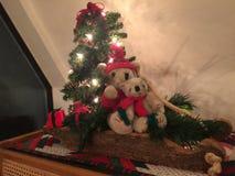 Osos de la Feliz Navidad Fotos de archivo libres de regalías