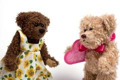 Osos de peluche de los pares con el corazón. Día de tarjeta del día de San Valentín Fotos de archivo libres de regalías