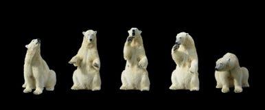 Osos polares Foto de archivo