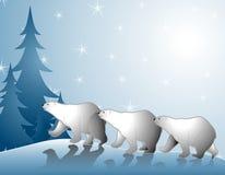 Osos polares que recorren en nieve ilustración del vector