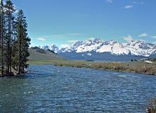 Łososiowa rzeka blisko Stanley, Idaho 4 Obrazy Stock