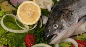 łososiowi warzywa Obrazy Royalty Free