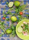 Ceviche Fotografia Royalty Free