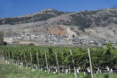 Osoyoos and Okanagan Lake Royalty Free Stock Photo