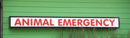 Ospedale animale per le emergenze dell'animale domestico fotografia stock libera da diritti