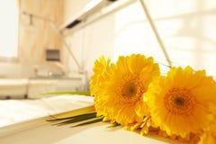 Ospedale del letto di fiore fotografia stock libera da diritti