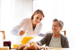 Ospite di salute e una donna senior durante la visita domestica Fotografia Stock
