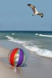 Osprey-Flugwesen über einem Wasserball auf dem Strand Lizenzfreie Stockfotografie