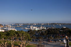 Osprey flying over San Diego Harbor Stock Photography