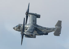 Osprey helicopter  Stock Image