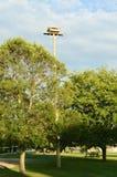 Osprey Nest on a Pole Stock Image
