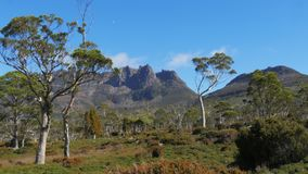 Ossa ΑΜ από τη χερσαία διαδρομή στο εθνικό πάρκο βουνών λίκνων απόθεμα βίντεο