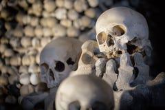 Ossa e crani umani come fondo Morte o concetto di funerale del cimitero immagini stock libere da diritti