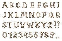 Ossa ed alfabeto Fotografia Stock Libera da Diritti