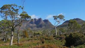 Ossa Mt от назеиного следа в национальном парке горы вашгерда сток-видео