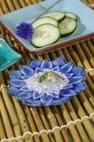 Ossequi di bellezza Fotografia Stock
