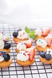 Ossequi minuscoli del dolce con i wafer della vaniglia Fotografia Stock Libera da Diritti