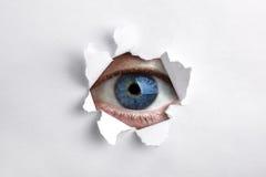 Osservando attraverso un foro in Libro Bianco Fotografie Stock Libere da Diritti