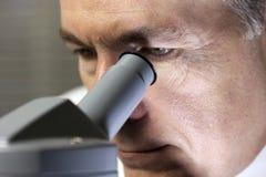 Osservando tramite il microscopio Fotografia Stock Libera da Diritti