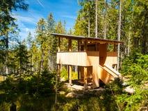 Osservatorio di legno nella foresta Immagine Stock