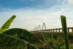 Osservazione del ponte di Nhat Tan dalla terra selvaggia sul letto del fiume Rosso Foglie della banana su priorità alta Immagini Stock