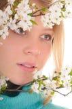 Osservi attraverso i fiori della sorgente Immagine Stock Libera da Diritti