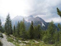 Osservi il fron una cima della montagna su un bello paesaggio dei moutains delle dolomia e su una foresta di conifere di gree nel Immagini Stock Libere da Diritti