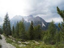 Osservi il fron una cima della montagna su un bello paesaggio dei moutains delle dolomia e su una foresta di conifere di gree nel Fotografia Stock