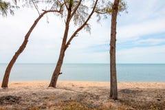 Osservi il mare con gli alberi dalla spiaggia anteriore Fotografie Stock